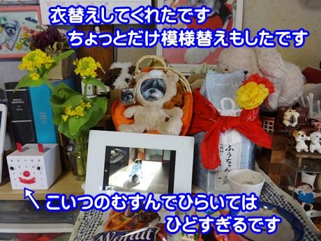 0406-01_20150406195623b91.jpg