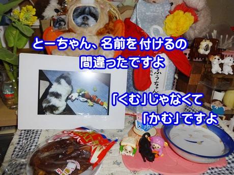 0410-07_201504101449491fd.jpg
