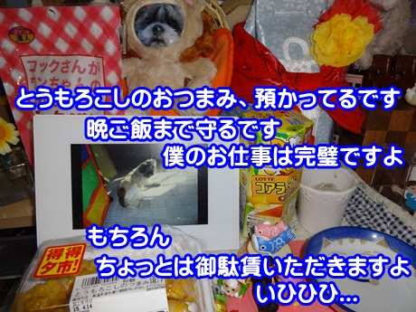 0414-06_20150414192500c0e.jpg