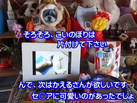 0508-08_201505081337437cc.jpg