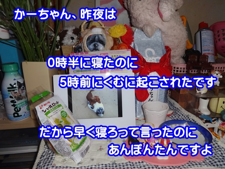 0524-05_20150524202152f38.jpg