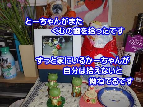 0528-07_20150528142912a96.jpg