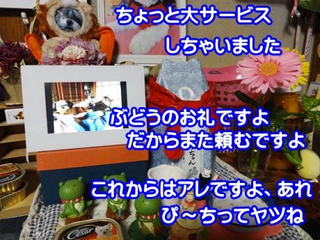 0621-05_20150621202342600.jpg