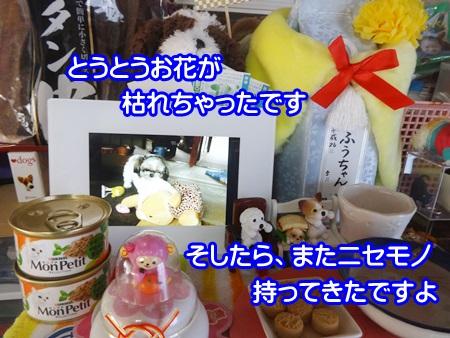 1229-05_20141229172326d2b.jpg
