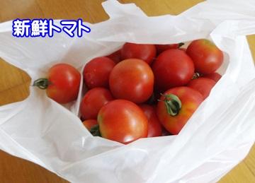 0628-トマト
