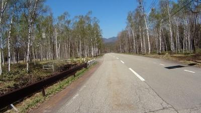日和田高原の快走路