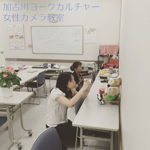 加古川 女性カメラ教室