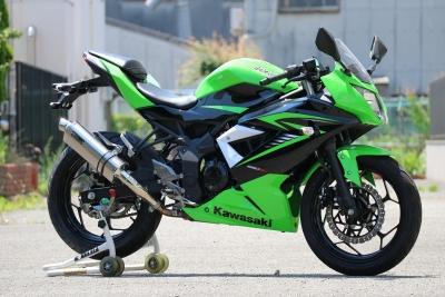 Ninja250SL   4260 (2)