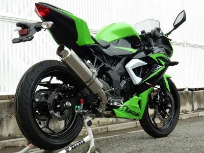 Ninja250SL  BT4260JM (2)