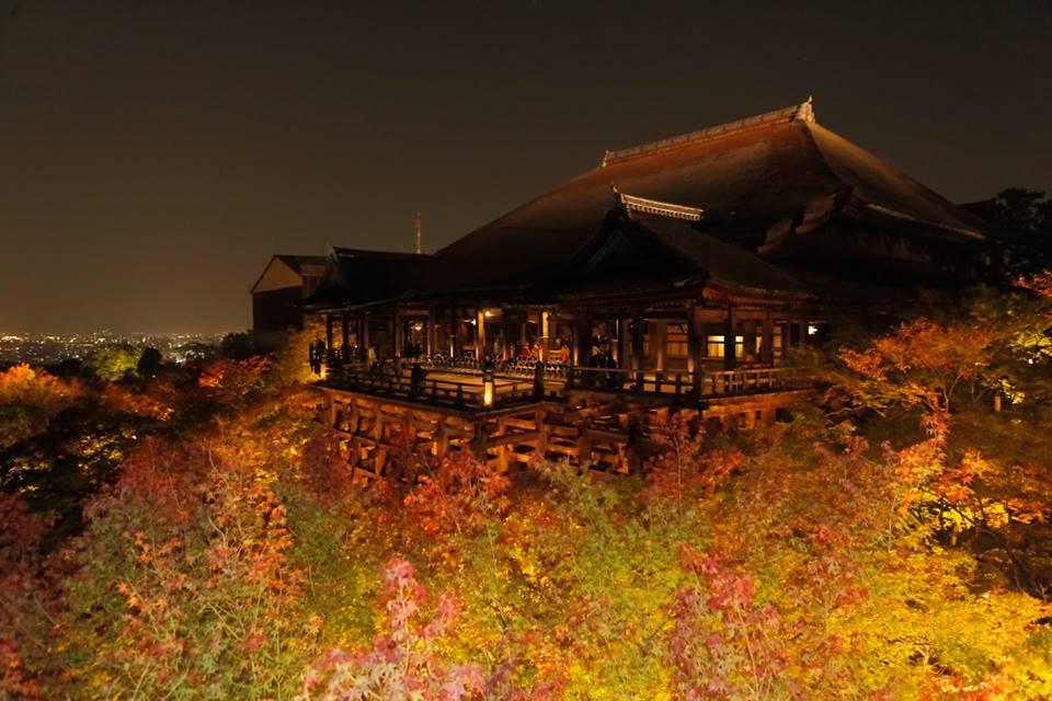 アメックス 京都 清水寺夜間特別拝観 清水寺