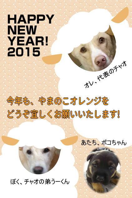 image2015.jpg
