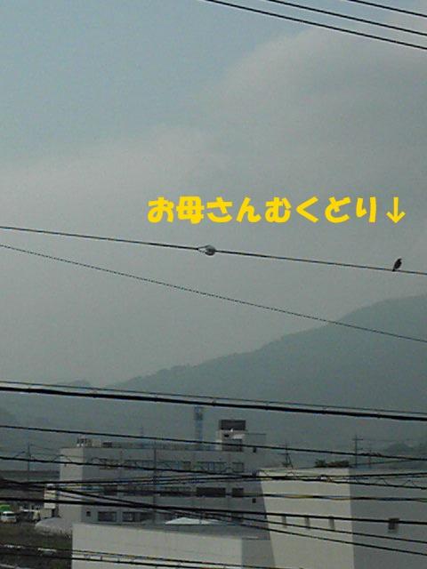 150515_165005.jpg