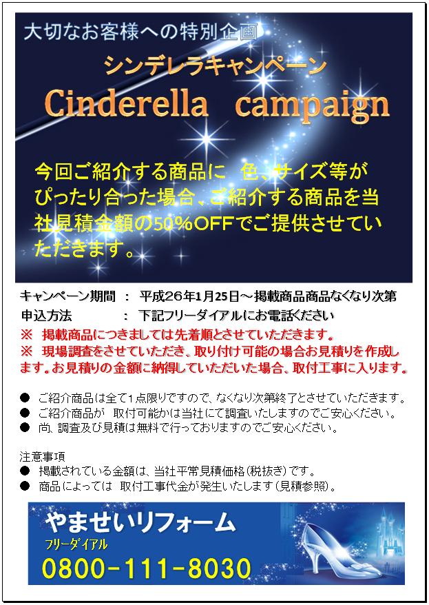 CinderellaCampaign.png