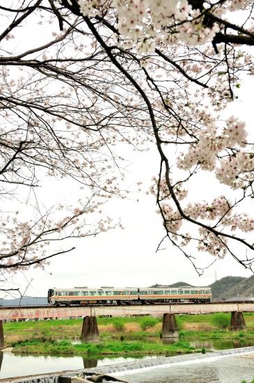 夢前川、三日月 053