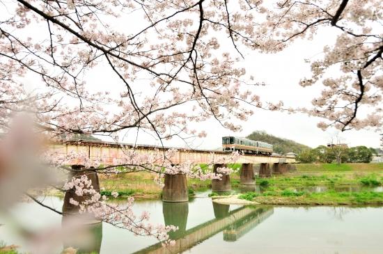 夢前川、三日月 091