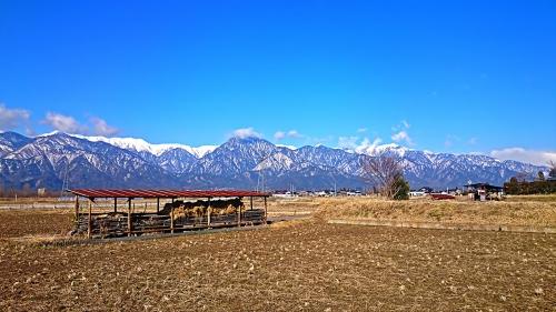 有明山と田んぼ1