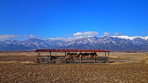 有明山と田んぼ2