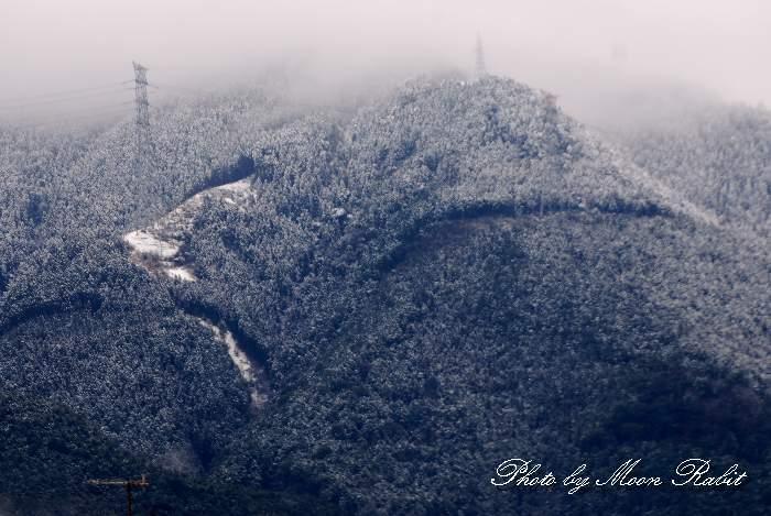 四国山地 薄雪