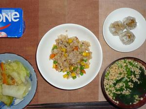 ガーリック炒飯,野菜炒め,焼売×3,納豆汁,ヨーグルト