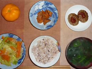 胚芽押麦入り五穀米,ハンバーグ×2,人参の煮物,野菜炒め,ほうれん草のおみそ汁,みかん