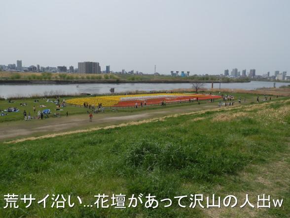 20150412 荒サイ花壇