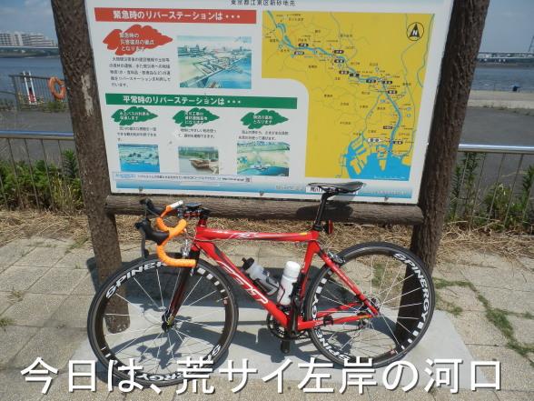 20150531 荒サイ河口