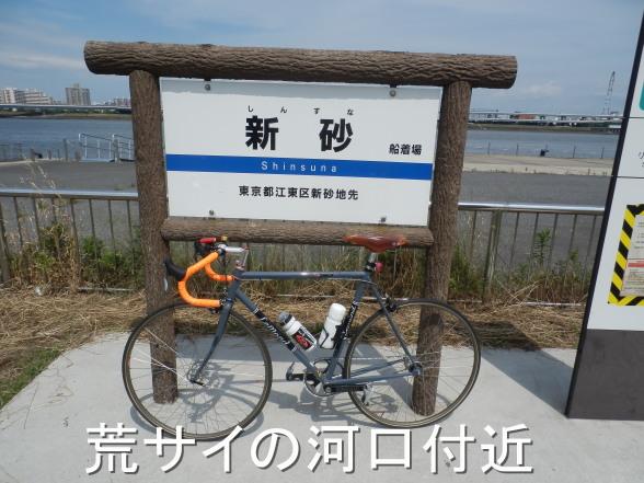 20150607 荒サイ河口