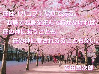 m_E5AE89E794B0E59684.jpeg