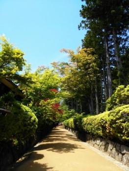 高野山 写真