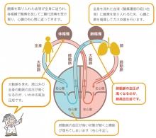 img_shikkan_02.jpg