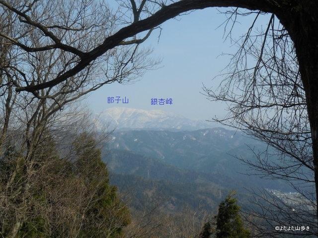 DSCN6211.jpg
