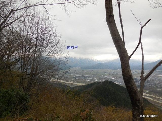 DSCN6352.jpg