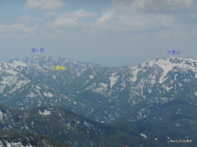 DSCN7247.jpg