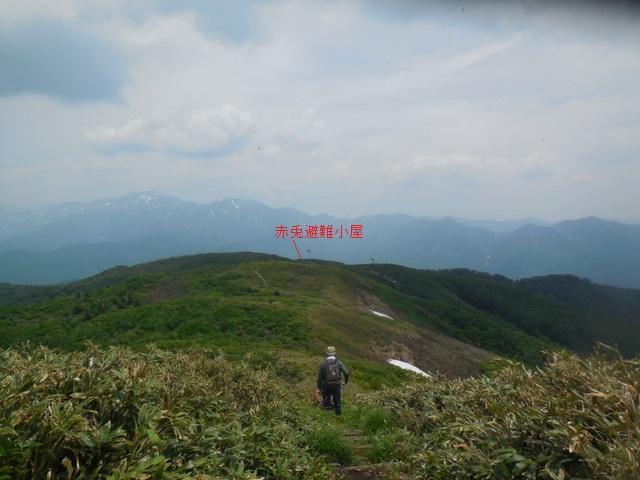 DSCN8060.jpg
