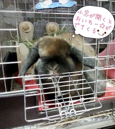 2015-03-25-19-50-05_blog.jpg