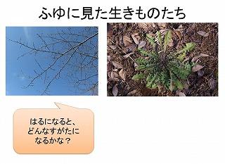 next-ph spring 1