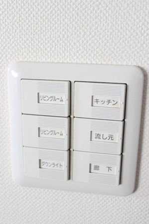 壁面ディスプレイ リビング入り口 (3)