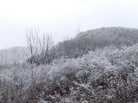 初雪のアヴェへ1