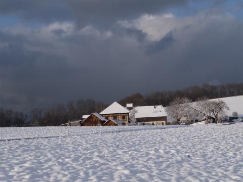 雪のドライブ2