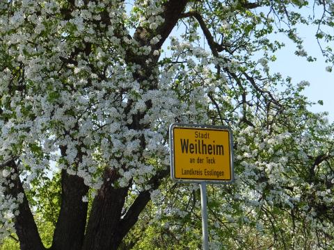 4/20Weilheim2