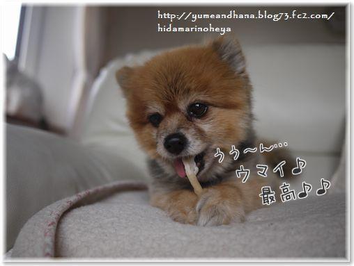 01-nOWl2uKaO44CfOe1420894721_1420894859.jpg