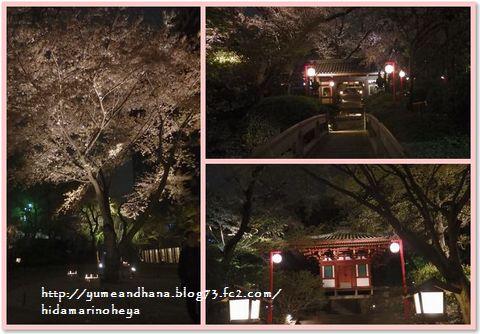001-ホテル中庭夜桜150406-2130