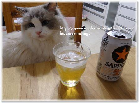 001-001ビールを飲もうよ150614-2200