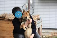 nagano20154gatu1-11