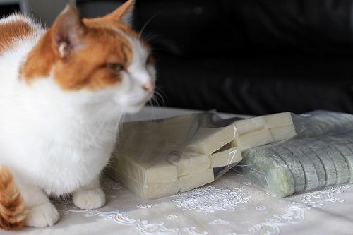 ブログNo.101(餅のせ猫)3
