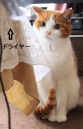 ブログNo.167(怖いけど気になる)8