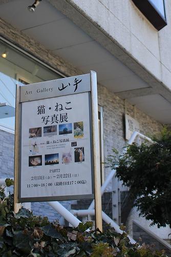 ブログNo.157(猫・ねこ写真展in横浜)1