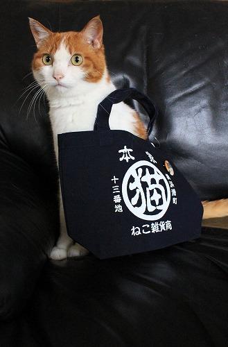 ブログNo.252(世界ネコ歩き写真展グッズ)9