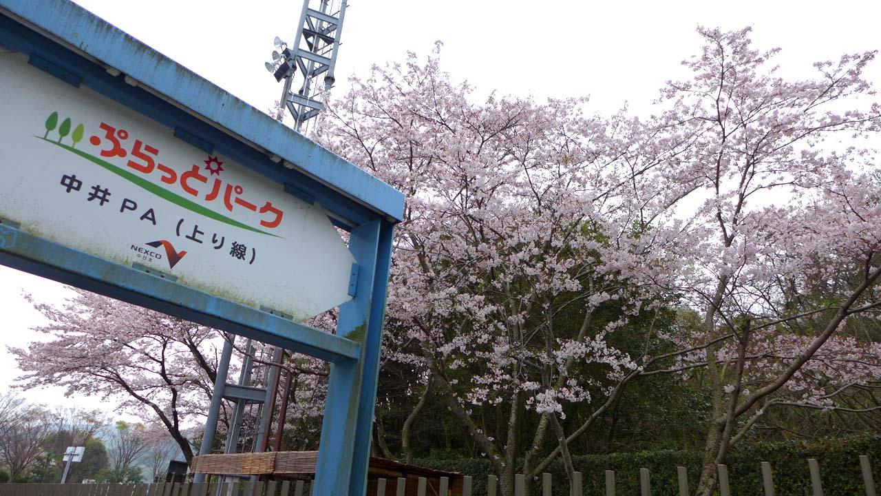 ashigara1506.jpg