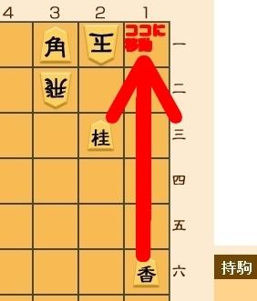0228-3.jpg